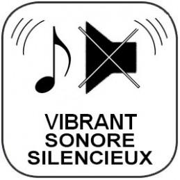 Minuteur - Compteur ou Décompteur 20h - Sonore / Vibrant / Lumineux